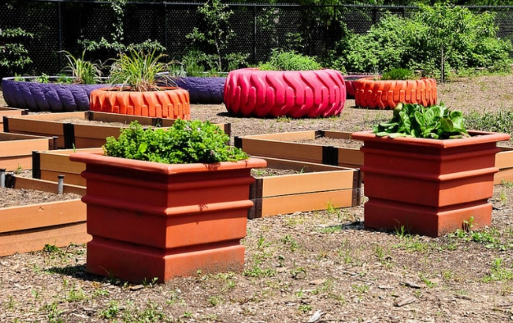 Park theme with colorful tractor tires with growing vegetables.