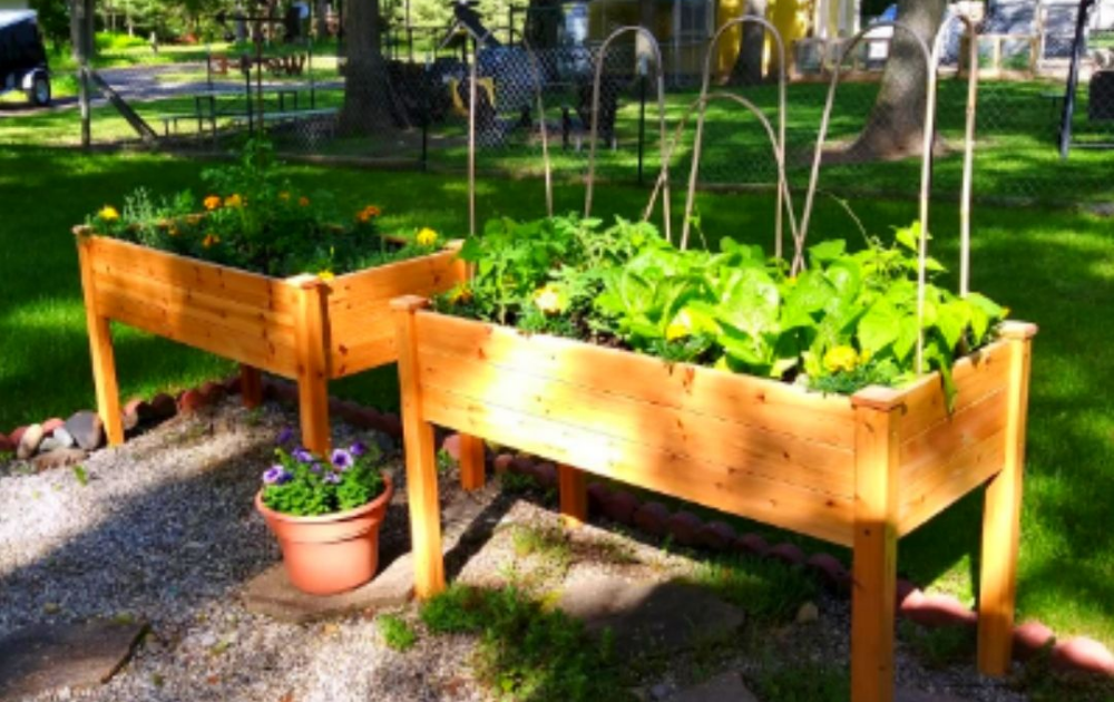 Two wooden raised beds with a terracotta pot next to them.