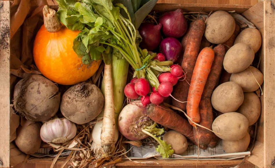 A group of root crops to be preserved in a wooden crate.