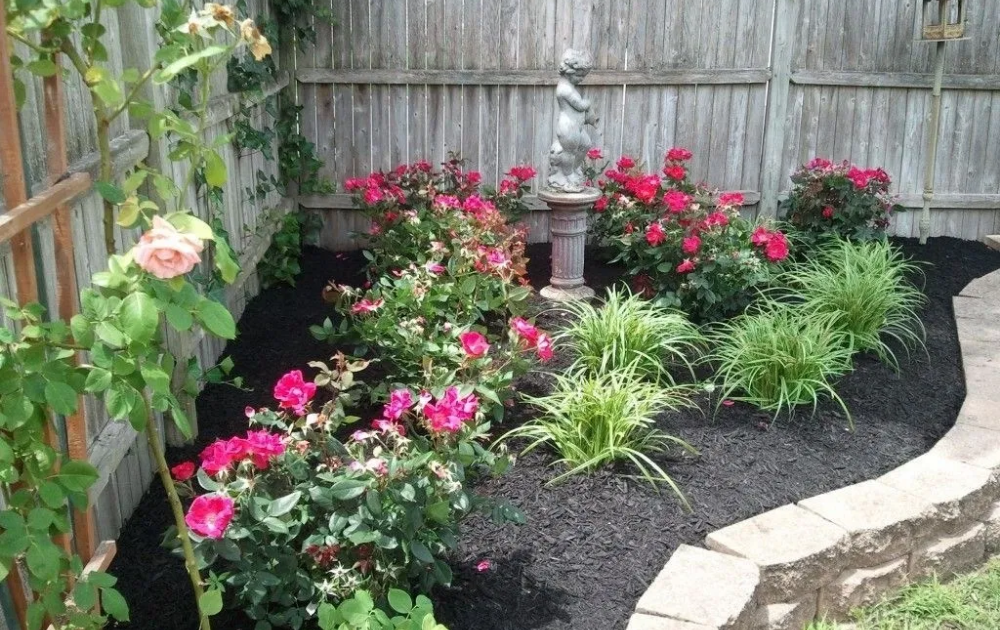 Backyard rose garden with curve-shaped stone bricks border.