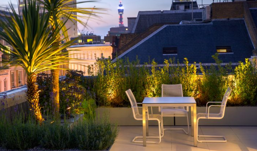 The roof garden displays wooden raised beds with lightings illuminating the aromatic lavender and two palm trees. It also features contemporary dining furniture.