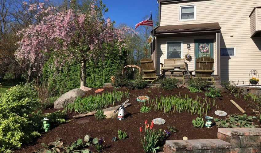 Garden in front of the house with brown mulch.