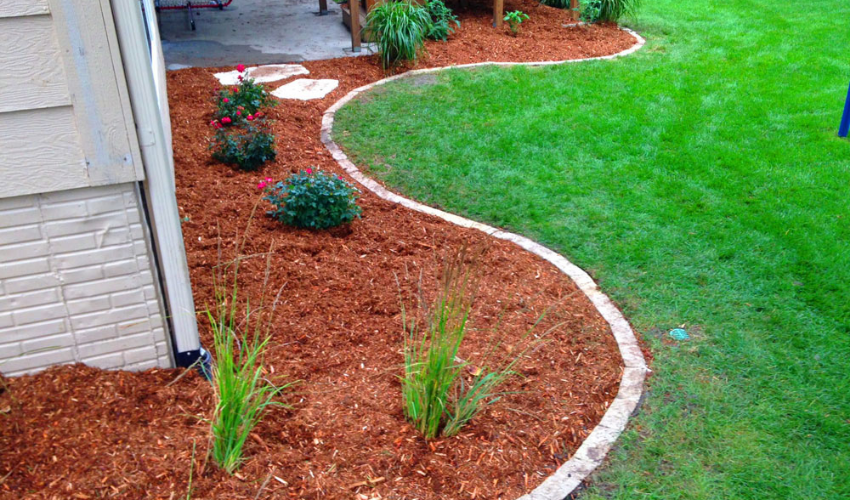 Red mulch in an ornamental garden landscape with concrete curbing.