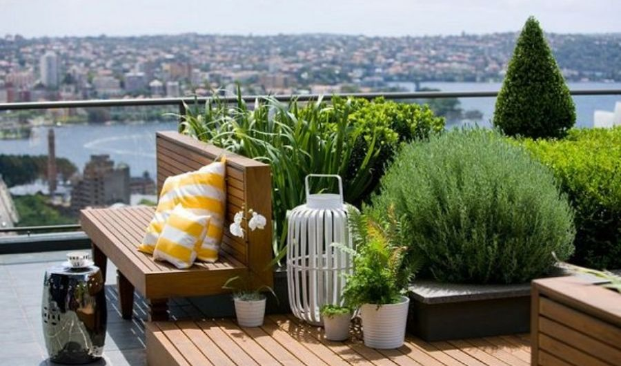 The rooftop display bench with yellow and white patterned throw pillows, wood decking, topiary, lush plants and city-wide ocean view.