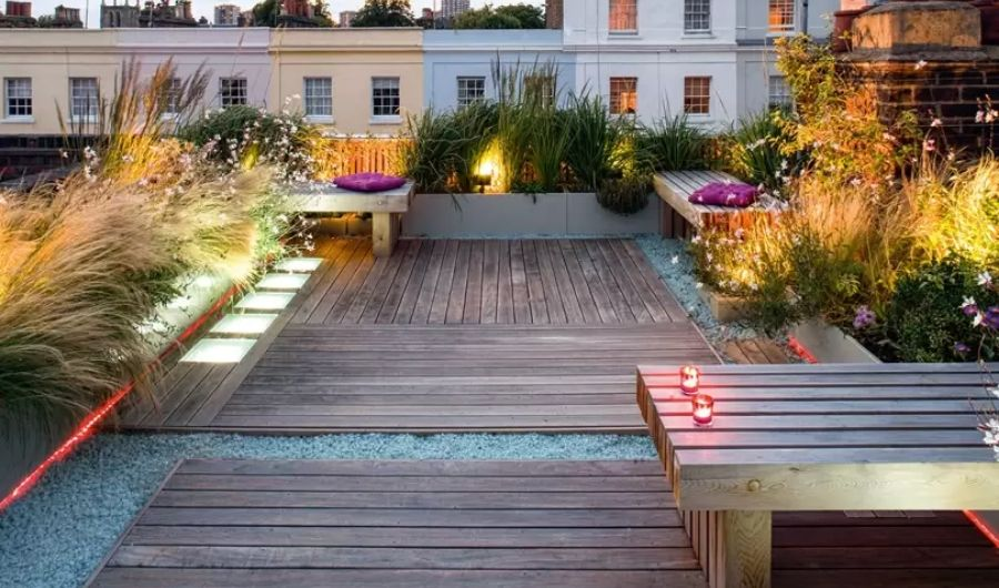 The roof garden has tall grass in freestyle arrangement, wooden benches with purple throw pillows each and crafty lightings.