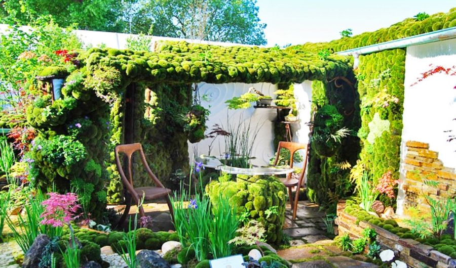 The rooftop garden has a fairy theme landscape with moss as the primary vegetation. It also has a coffee table and a well-arranged stone bed with flowering plants.