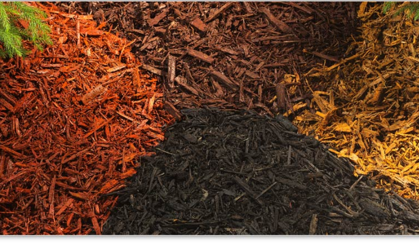 A heap of dyed mulch in black, red, brown and yellow color.