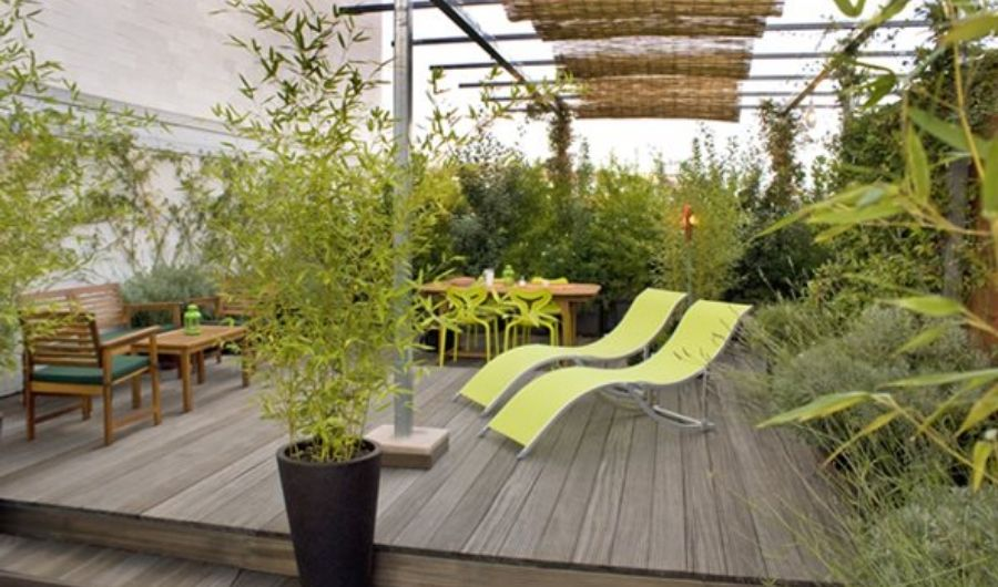 The garden has an overhead structure with bamboo roll, sideyard wooden seatings, freestyle vegetation and two loungers in lime green.