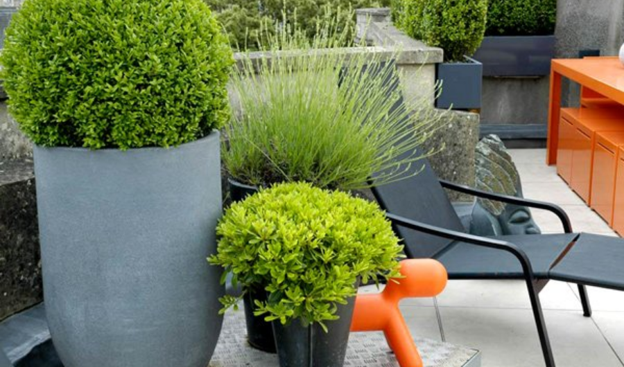 The contrasting colour of the orange table, green potted plants, and black stainless steel make the rooftop garden visually appealing.