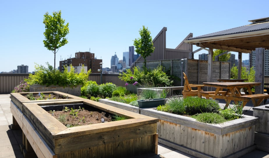 This roof garden features plants, a few wooden raised beds and dining furniture.