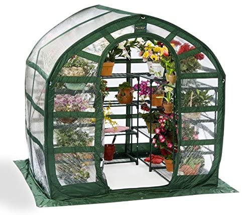 Flower House FHSP300CL SpringHouse Greenhouse Review