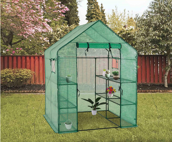 Deluxe Green House Window Version Review