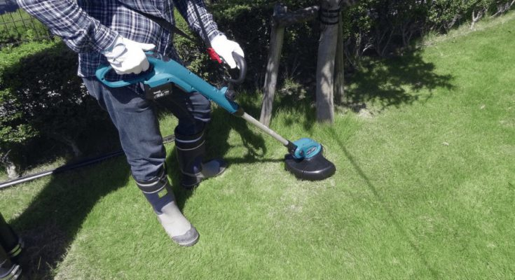 Trimming weeds with Makita cordless string trimmer.