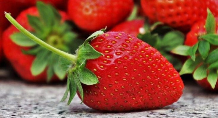 Plump red strawberry.