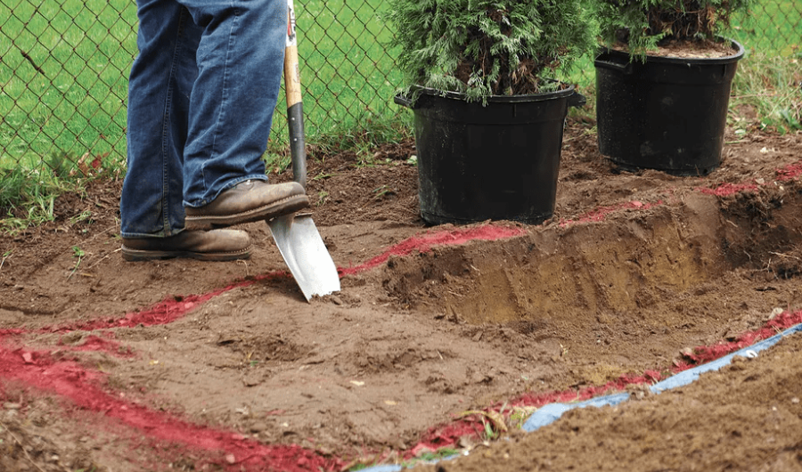 Landscaper trenching the ground with a red marker guide to plant a privacy hedge.