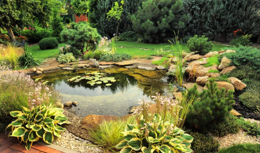 Pond with crystal clear water surrounded with stone and ornamental plants.