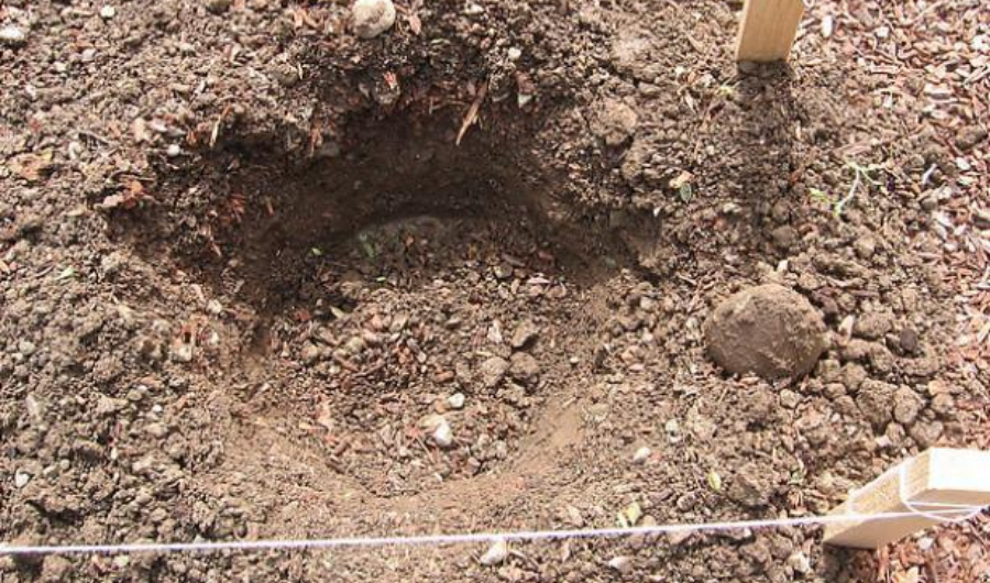 A hole in the ground in-between two wooden posts with string.