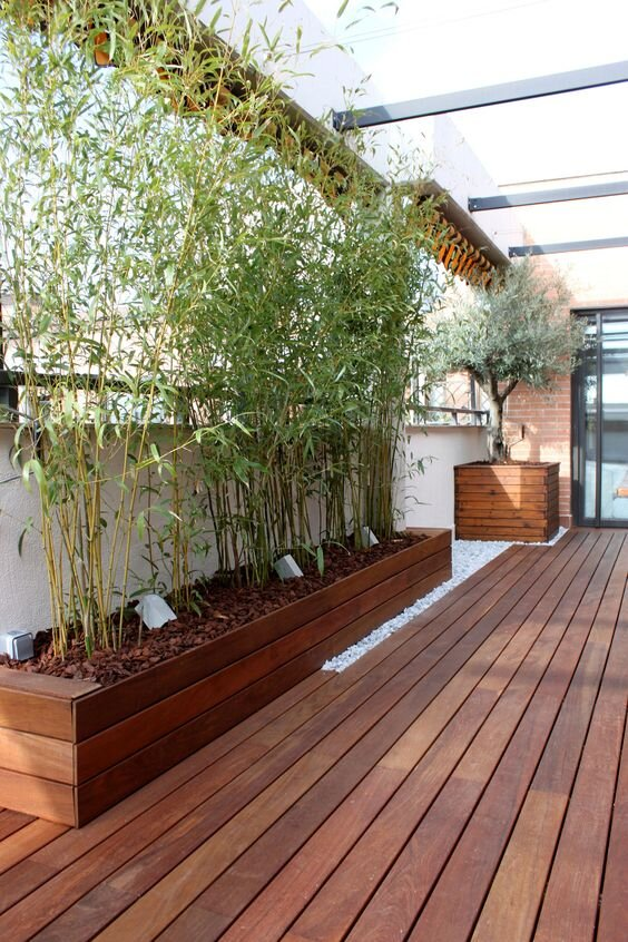 Potted bamboo plants in a rectangular wooden garden bed and square-potted flowering tree in the side corner of a balcony deck.