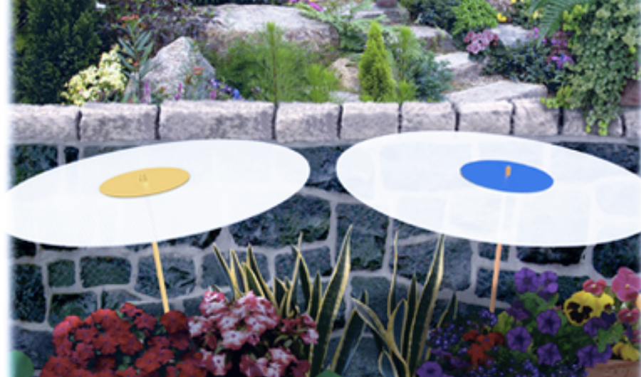 Two portable shade dots in white to provide shade in container-grown flowering plants.