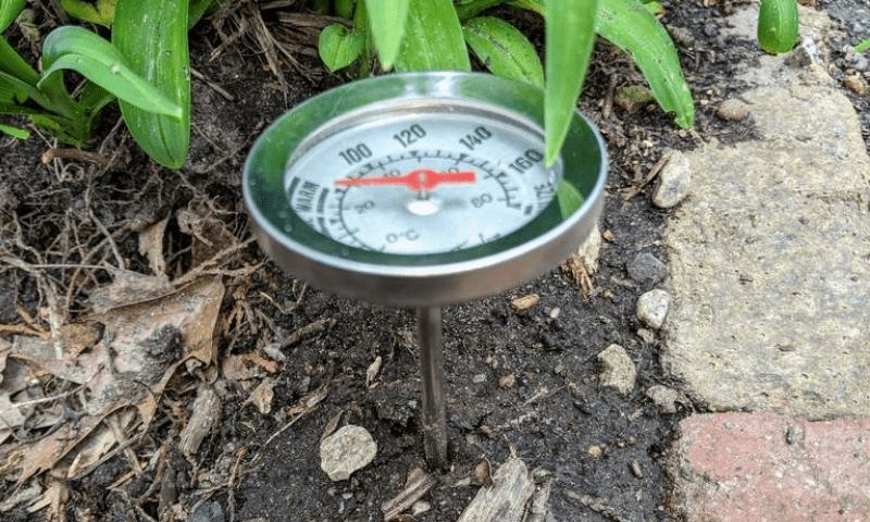 Round soil thermometer drove in a garden bed