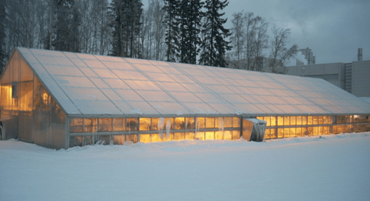 The greenhouse structure that also functions as a hothouse in winter.