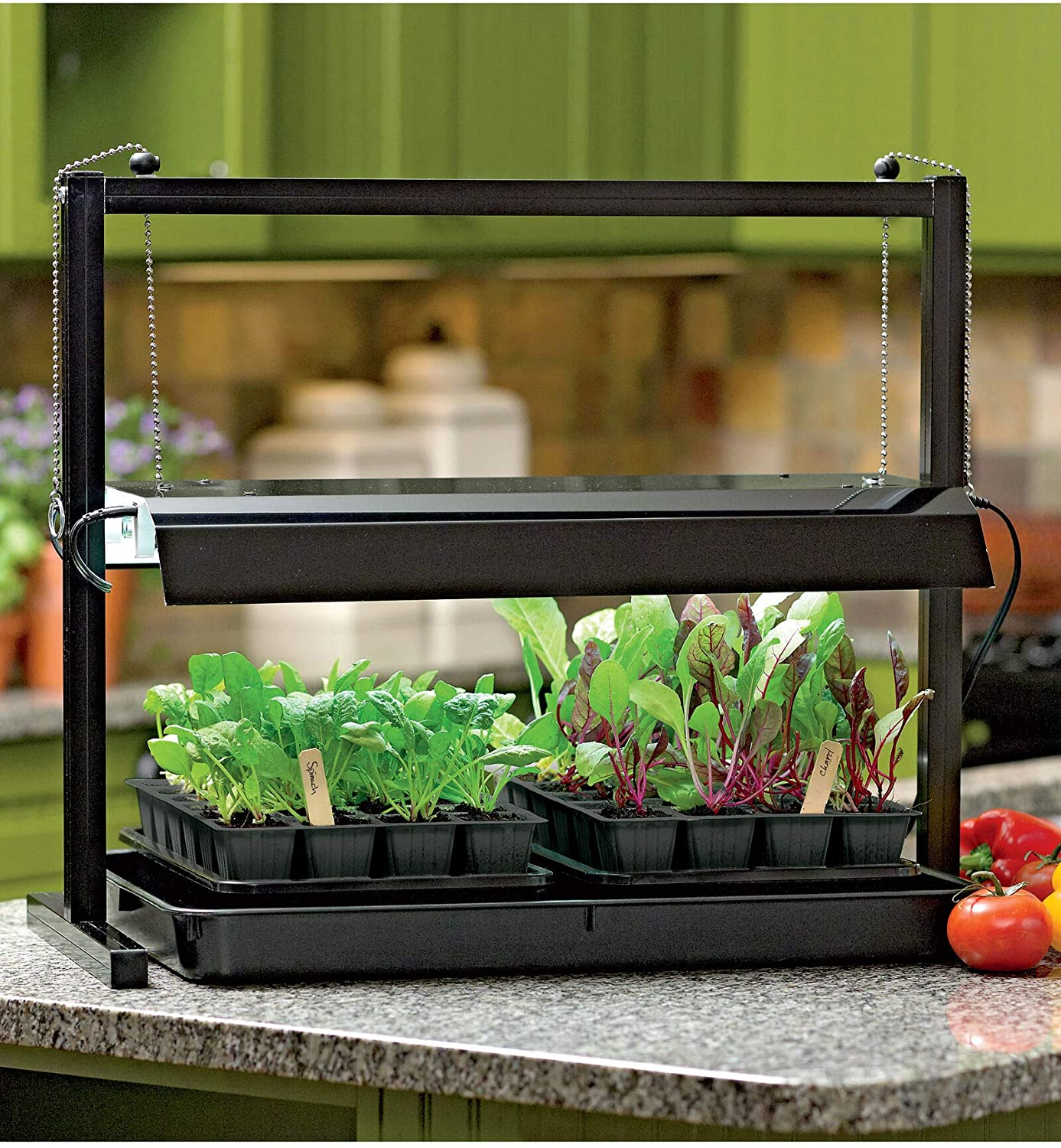 Compact hydroponic countertop grow light