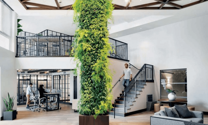 A vertical column garden at the center of the living room