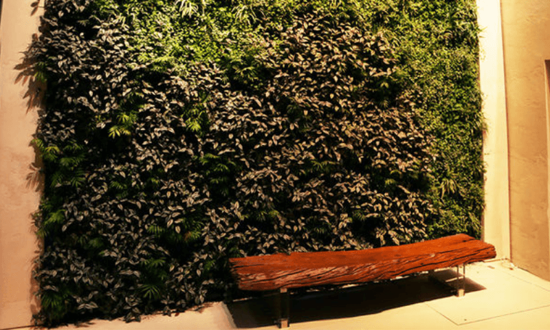 Natural log bench in the front of vertical wall garden