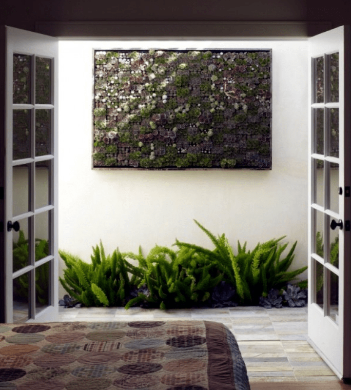 Square-framed succulents vertical garden