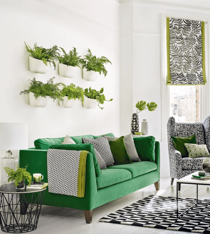 Two rows of six potted plants on the wall with a green couch and throw pillows below.