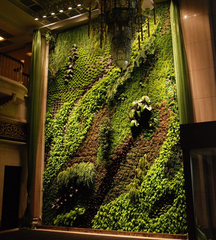 Framed indoor vertical garden