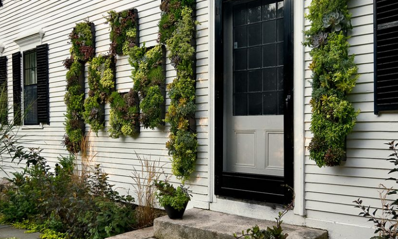 Both rectangular and box-shaped pocket gardens display on the outdoor walls.