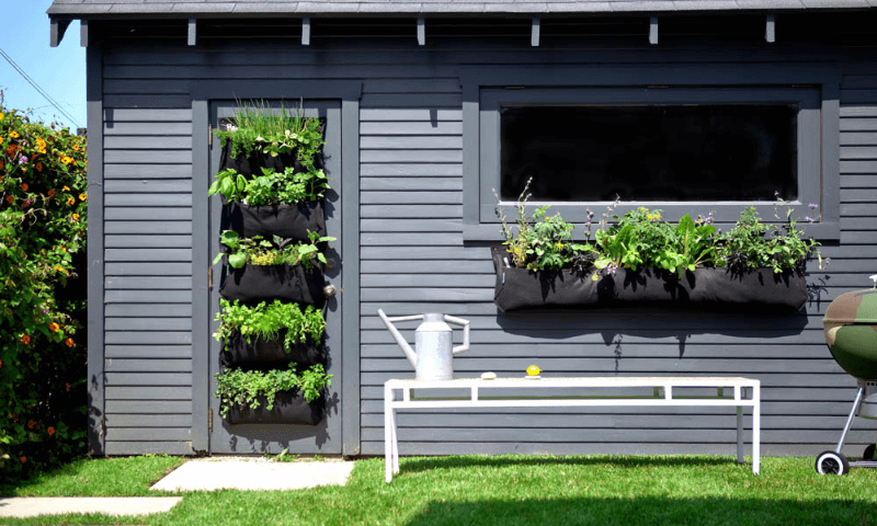 Pocket vertical gardens in the front door and below the windowsill.