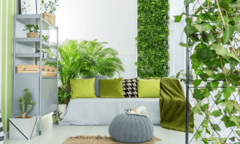 Potted plants and garden walls in the living room