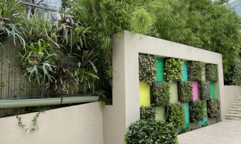 Boxed pattern wall garden