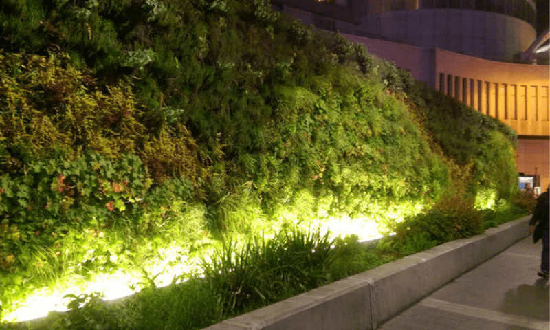 Lighted outdoor vertical garden