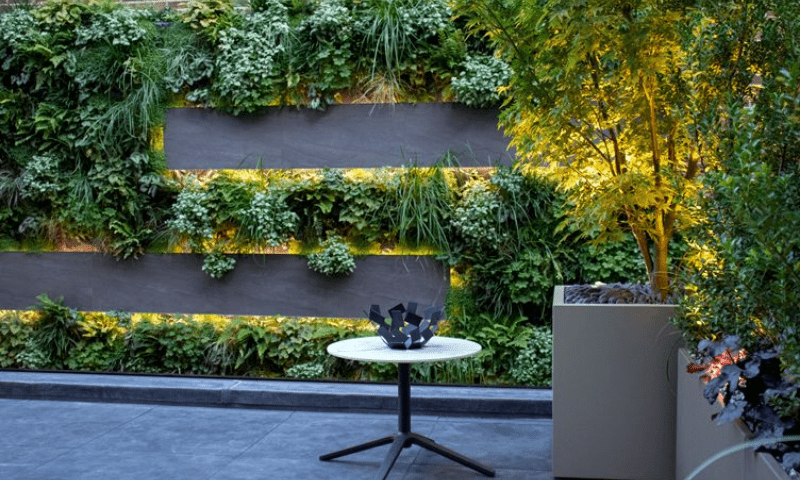 Living wall in the courtyard with an S-shaped design
