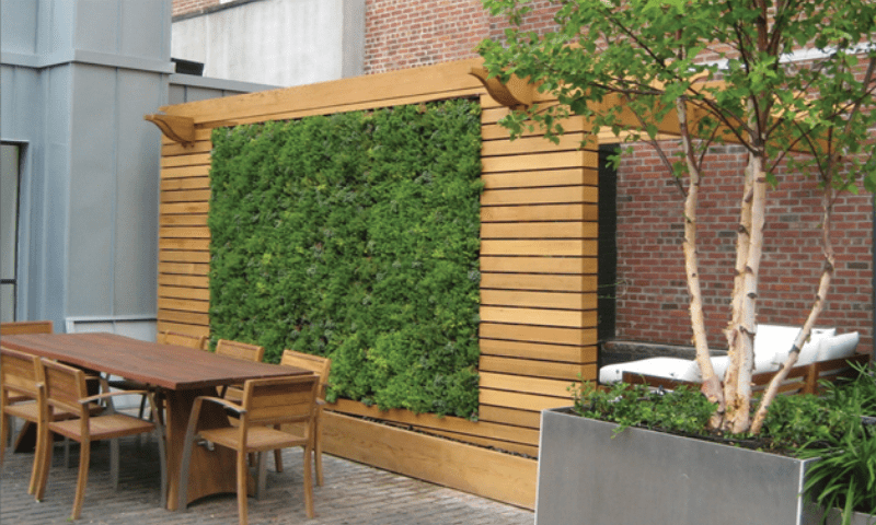 Featured green wall and wooden dining set in a backyard.