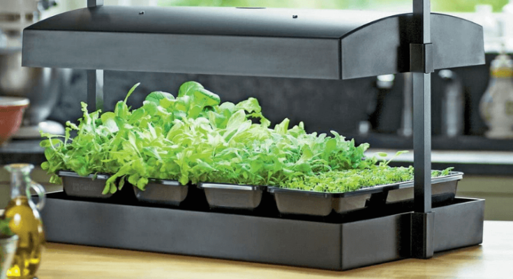 Countertop grow light for seedlings from Future Harvest