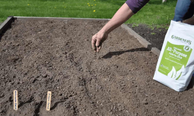 A person feeding a garden bed before planting in it.