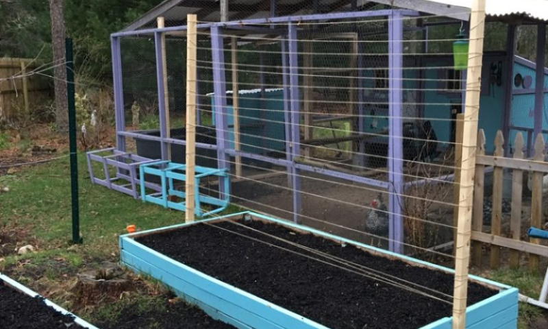 A blue raised garden bed with a wooden vertical trellis