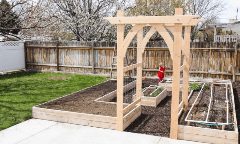 A wooden arbor amid a couple raised bed gardens