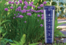 AcuRite 5-Inch Capacity Easy-Read Rain Gauge