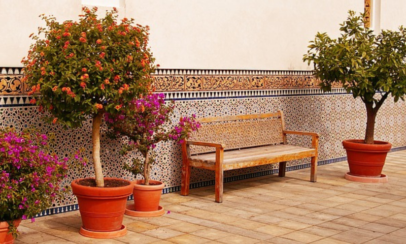 Potted flowering trees and a wooden bench display in an oriental garden.